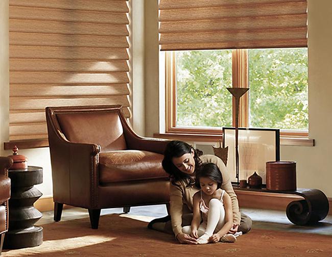 access and adjust motorized blinds around the world Hunter Douglas San Antonio 78249